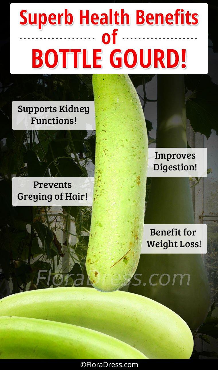 Superb Health Benefits of Bottle Gourd