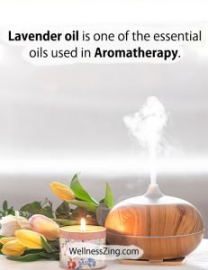 Lavender Oil is Essential Oil in Aromatherapy
