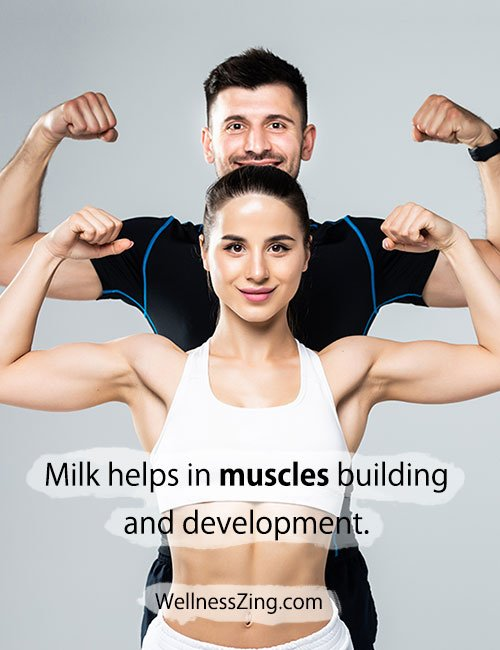 Milk Helps in Muscle Development