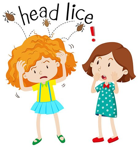 Remove Lice from Hair using Home Remedies