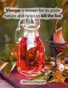 Vinegar is Acidic in Nature and Kills Head Lice