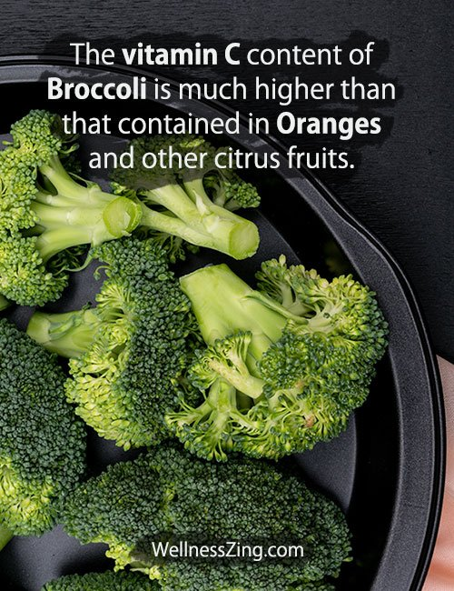 Broccoli Contain more Vitamin C than Oranges and Other Citrus Fruits