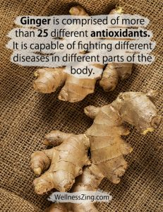 Ginger contains more than 25 types of antioxidants