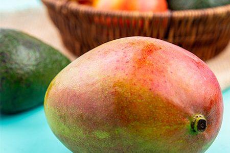 Mango Benefits for Health