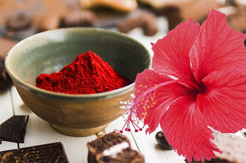 Hibiscus Powder Hair Mask