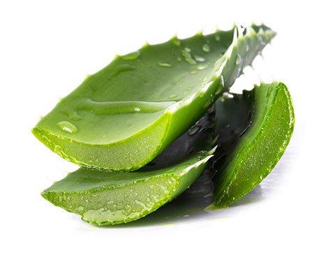 Aloe vera for Thick Eyelashes