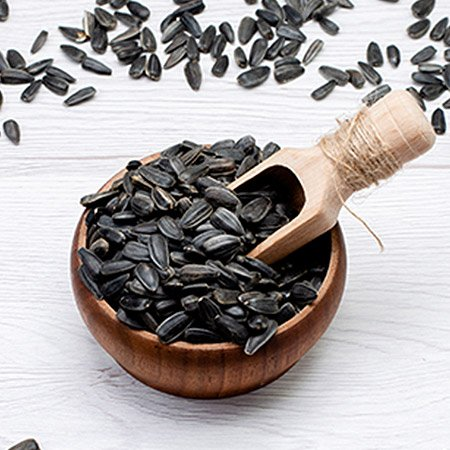 Black Seeds Oil Benefits