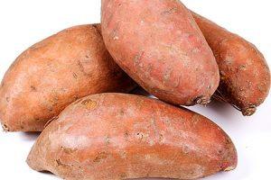 Sweet Potato for Diabetics