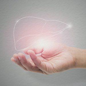 Hepatitis C Liver Care