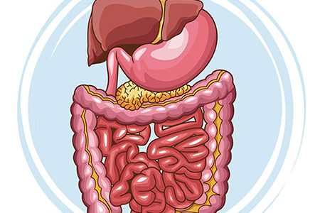 Improve Digestion with Food and Lifestyle Changes