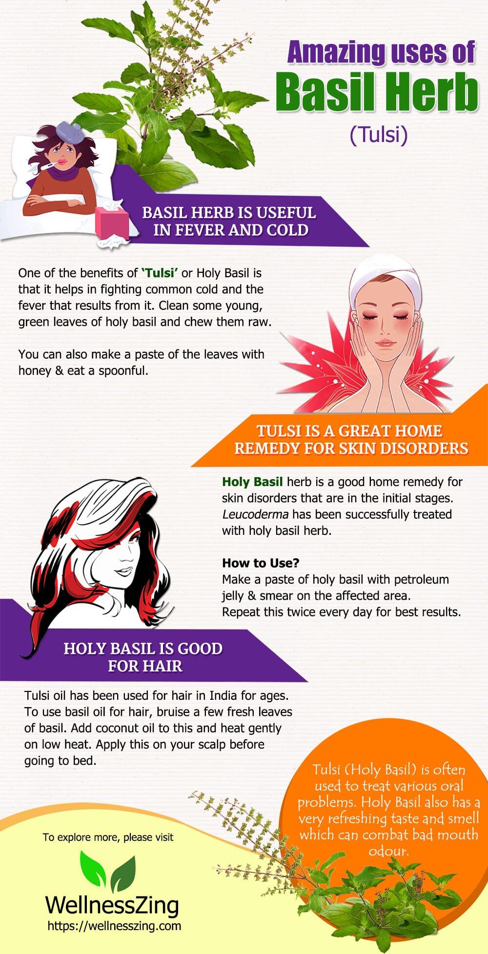 Uses of Holy Basil or Tulsi