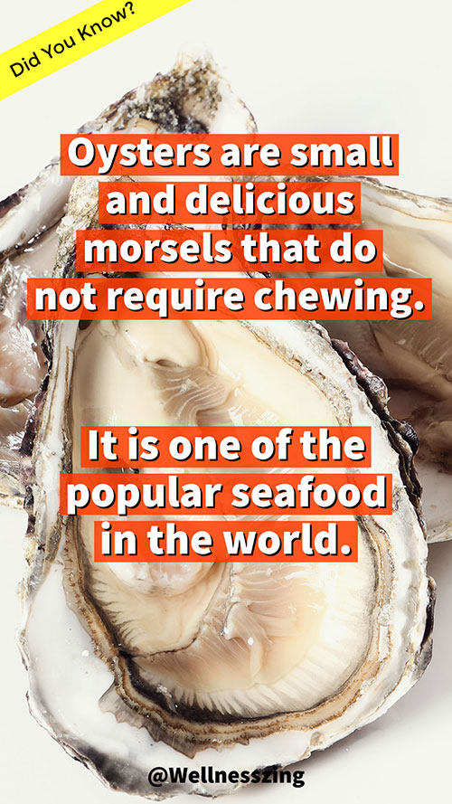 Oyster is a Popular Seafood