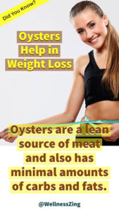 Oysters Help in Weight Loss