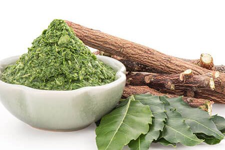 Neem Leaves Benefits